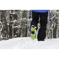 Ледоходы как помощник в зимнем выгуле собаки